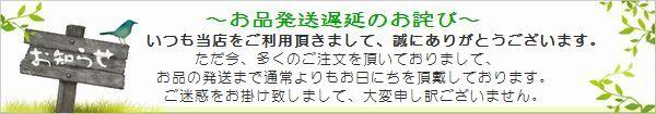 201604発送遅延お詫び