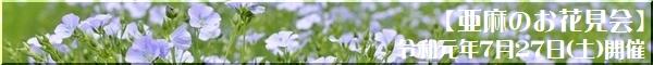 亜麻のお花見会イベントページ